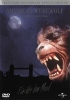 American Werewolf In London - [DE] DVD