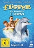 Flipper (TV 1964-1967) - Staffel 1 - [DE] DVD